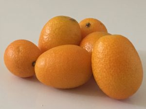 Kumquat - The Alchemy - fruit de saision